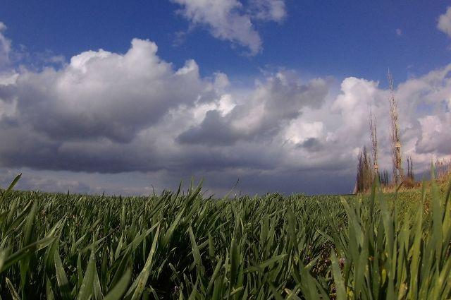 На предстоящей неделе кузбассовцев ожидает неустойчивая погода.