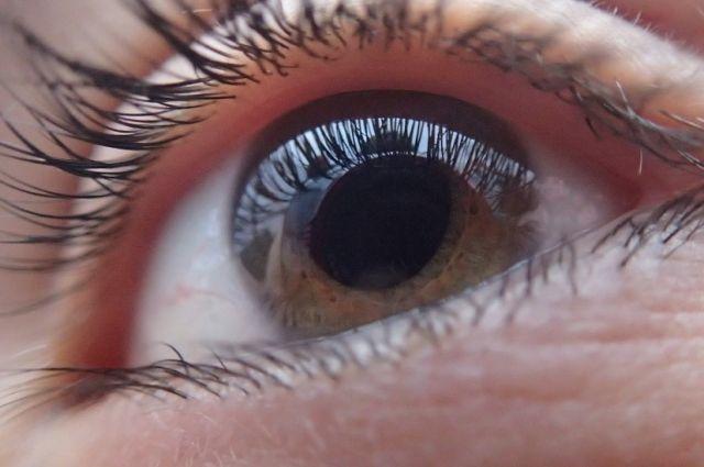 Желающим измерят глазное давление и дадут рекомендации.