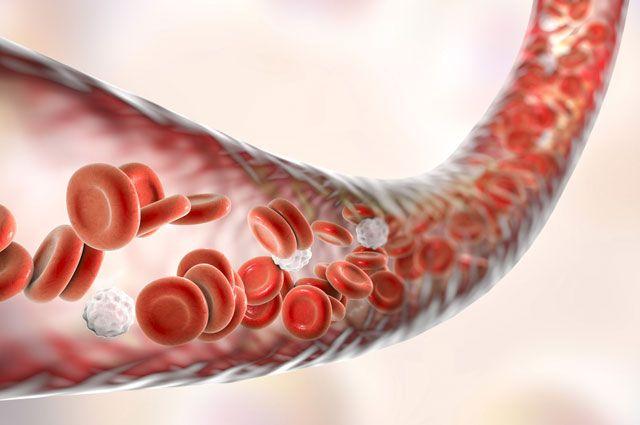 Внутренний варикоз малого таза лечение