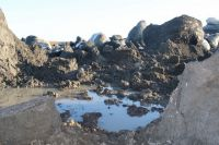 На Ямале возможно появление новых газовых воронок.