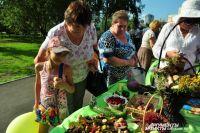 Зелёные экспозиции пользуются особым успехом у старшего поколения и детворы.