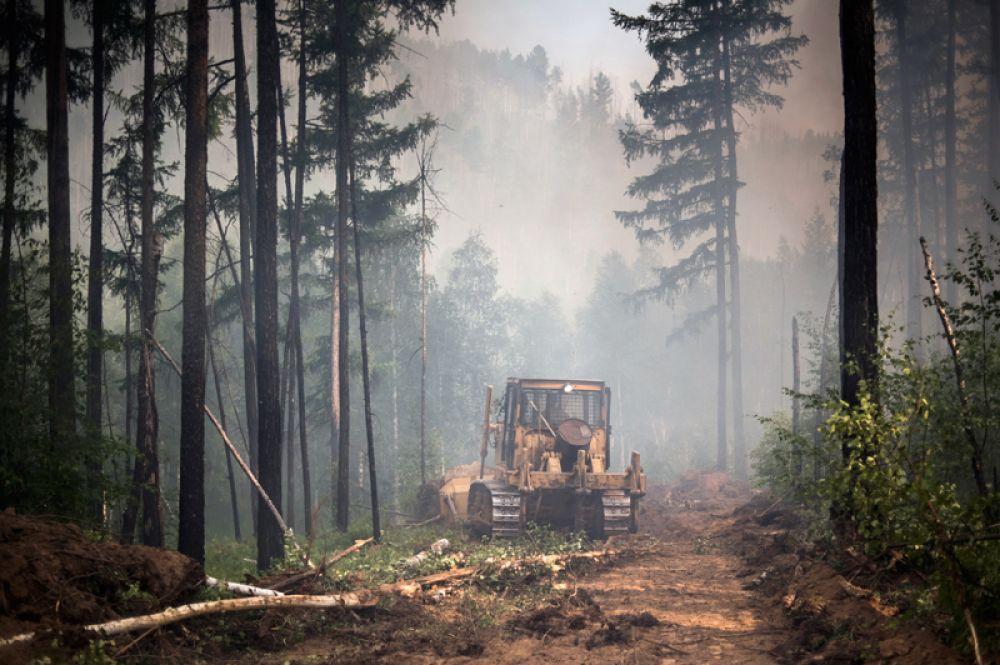 Создание заградительной полосы с помощью бульдозера во время ликвидации лесного пожара в окрестностях села Бичура в Бичурском районе Бурятии.