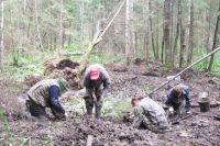 В лесах Финляндии до сих пор лежат тысячи красноармейцев