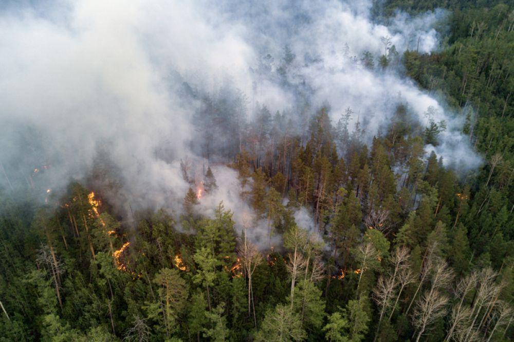Лесной пожар в Бичурском районе Бурятии.