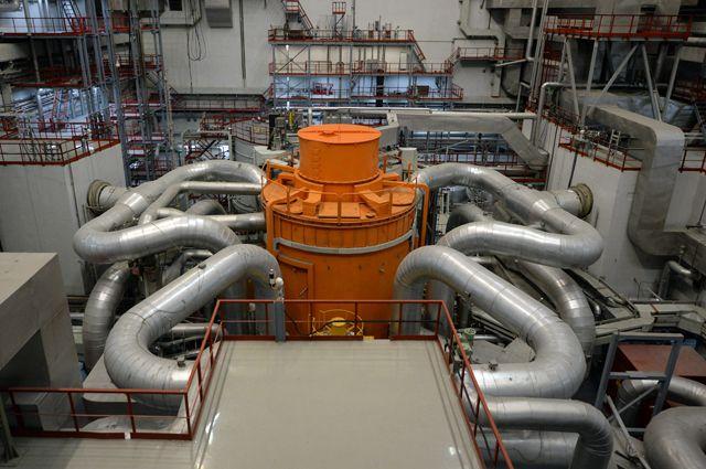 Реактор БН-800 напоминает огромного осьминога с оранжевым телом и серебряными щупальцами.
