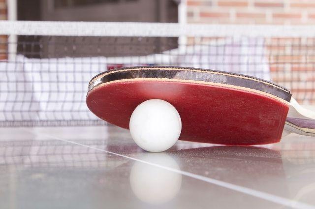 Настольный теннис станет одной из дисциплин спартакиады.