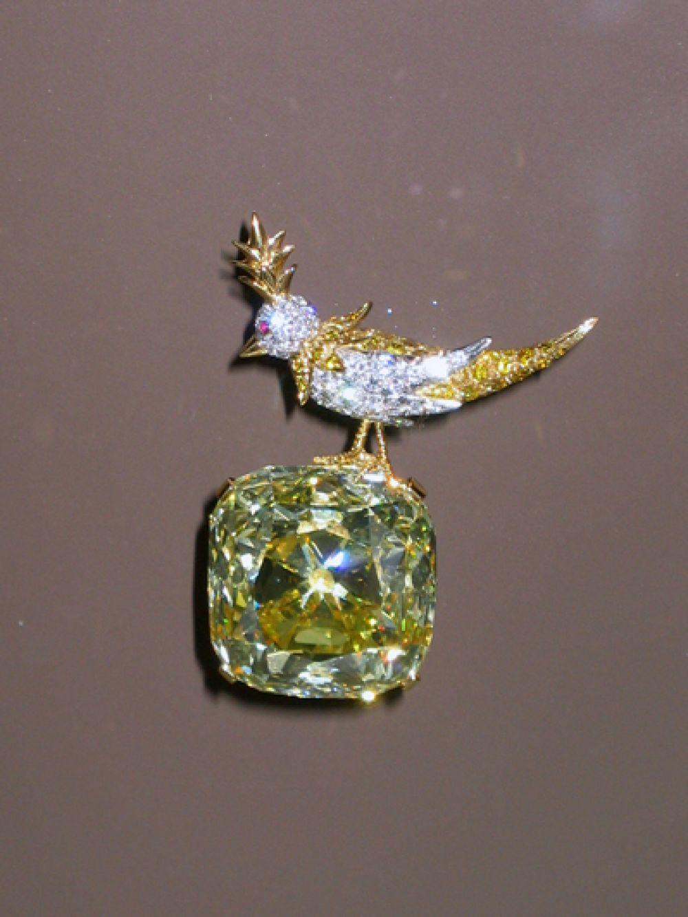 Бриллиант «Тиффани» — знаменитый камень, найденный на руднике «Кимберли» в ЮАР в 1877 году. Исходная масса — 287 карат. В 1960 году на основе камня ювелиром Жаном Мишель Шлюмберже была создана брошь «Птица на камне», но в 2012 году птицу отделили от бриллианта. С тех пор ювелирное изделие располагается в фирменном магазине «Тиффани» на Пятой авеню в Нью-Йорке.