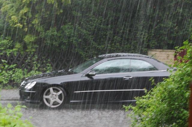 В отдельных районах завтра пройдут ливни.