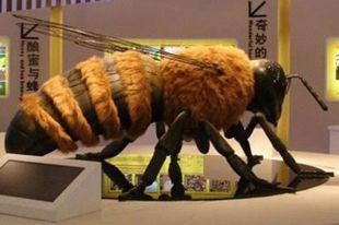 В зале представят большие макеты пчелы.
