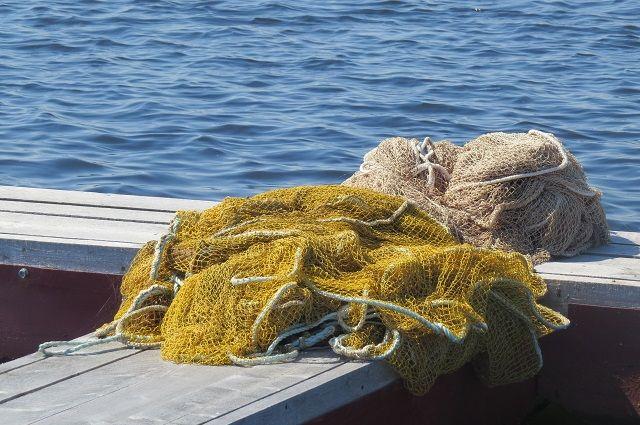 Житель Чайковского с помощью рыболовной сети, являющейся запрещённым средством лова, незаконно ловил рыбу.