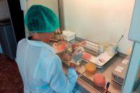 Исследования пищевых продуктов на микробиологические показатели безопасности, в том числе обнаружение Listeria monocytogenes, проводятся в лаборатории.
