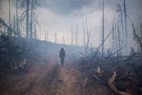 Во время тушения природного лесного пожара в Кабанском районе Бурятии.