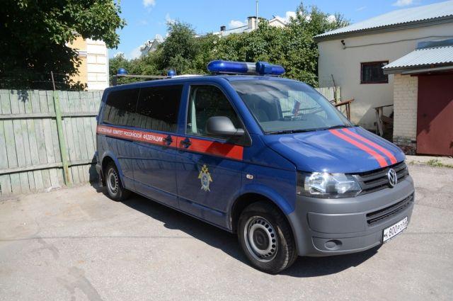 ВНовоселовском районе наребенка упали футбольные ворота