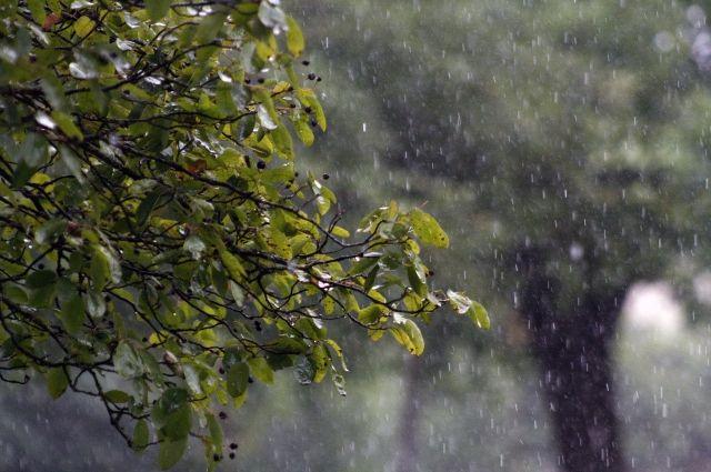 В областной столице 16 июля прошли грозы, ливневые дожди.
