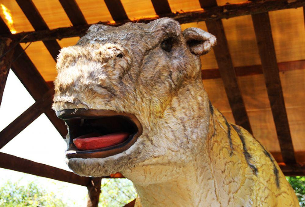 Голова этой «лошадки» возвышается в трёх метрах над землёй