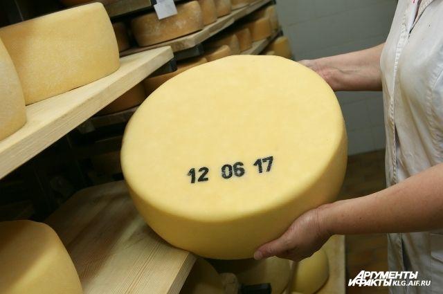 10 литров молока идёт на килограмм сыра.