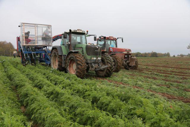 Фермеры Калининградской области начали сбор урожая.