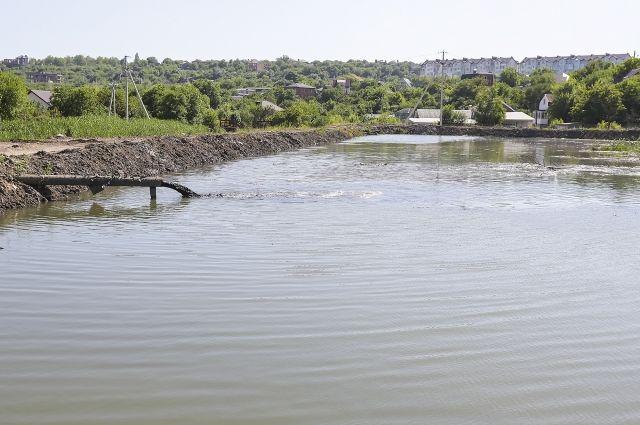 Экологи прочесали весь берег реки Темерник вчерте Ростова-на-Дону