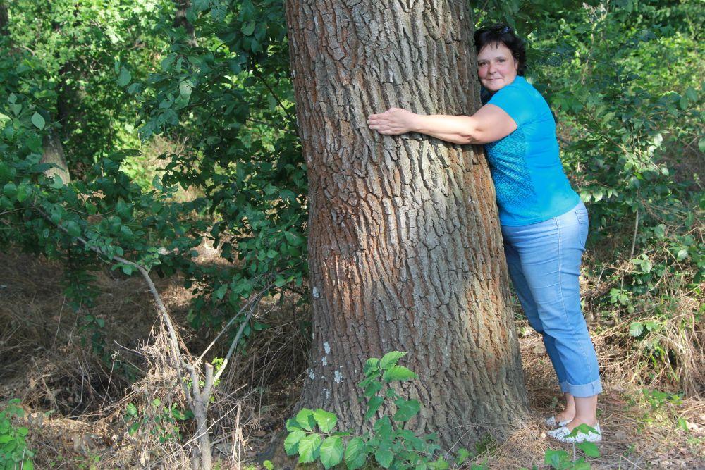 Экологическая тропа «Войди в природу другом» начинается с рощи, где растут 100-летние дубы.