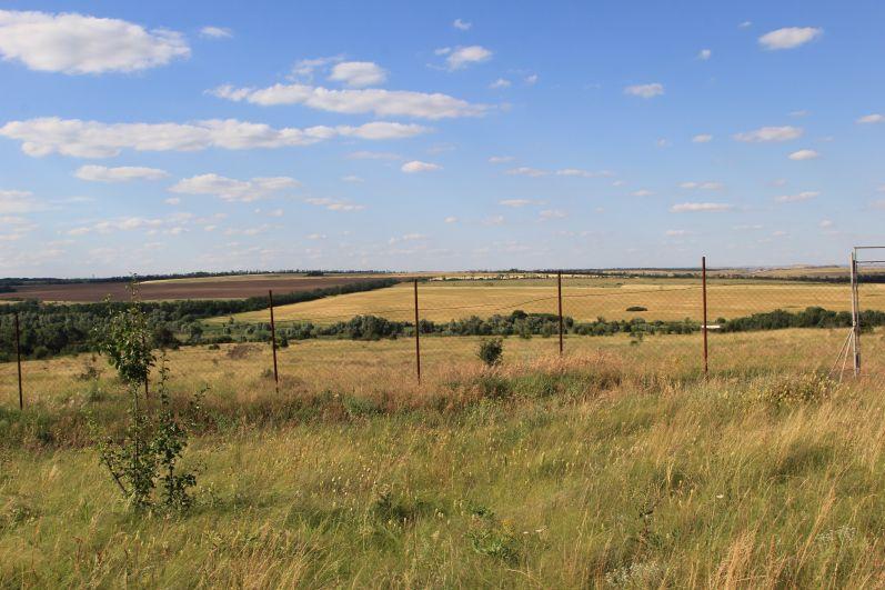 Наша главная цель - это посмотреть оленей, которые живут в вольере на территории 41 га.