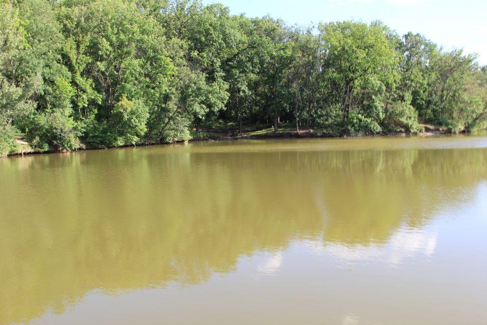 Река Кундрючья, на которой расположен город Красный Сулин. Отсюда начинается экологическая тропа.