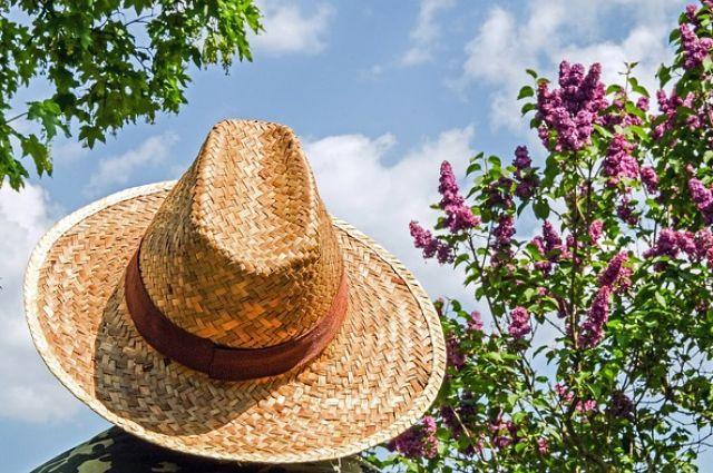 Фестиваль шляп проведут в парке города