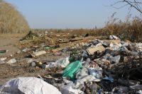 В ближайшие годы все полигоны коммунальных отходов в регионе приобретут цивилизованный вид.