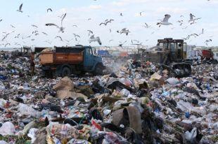 Учёные не берутся оценивать ущерб от челябинской свалки, ведь неизвестно, какие именно отходы там складируют.