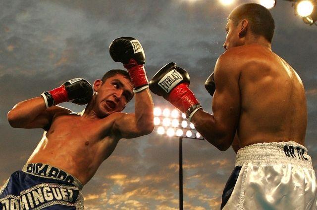 В Кемерове пройдет самая массовая тренировка по боксу.