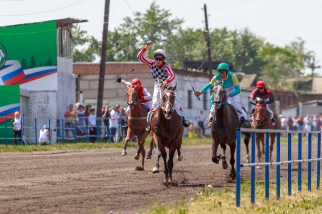 Жителей и гостей края приглашают на открытый чемпионат Красноярского края по конному спорту.