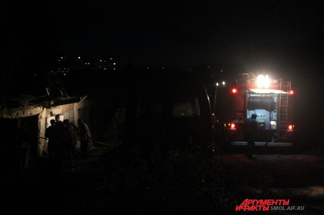 Пожарные достают щенков из взорвавшегося гаража. Фото с места происшествия.