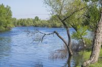 В Приморье река Раздольная вышла из берегов и затопила участок автодороги.