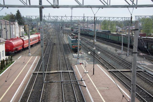 ВВоронеже под поезд попал 3-х летний ребенок