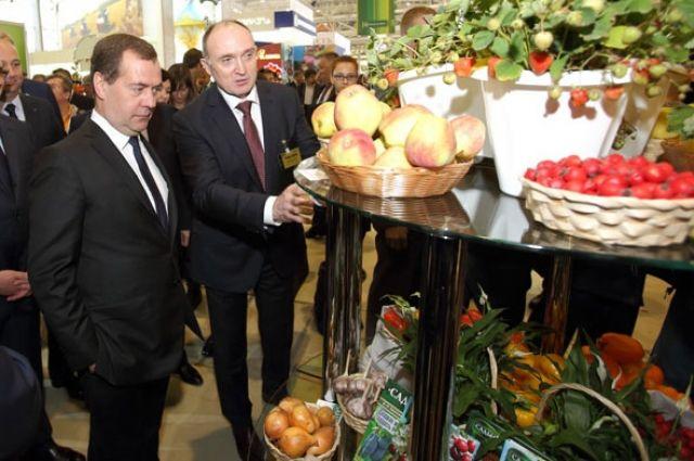 Председатель правительства РФ Дмитрий Медведев и губернатор Челябинской области Борис Дубровский