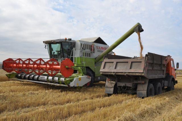 В Кемеровской области началась уборка зерновых.