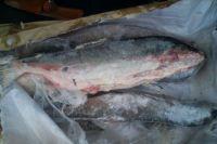 Мороженую рыбу производства Фарерских островов везли из Санкт-Петербурга.