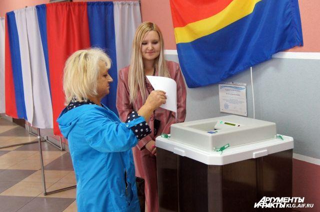Заработала «горячая линия» по выборам главы Калининградской области.