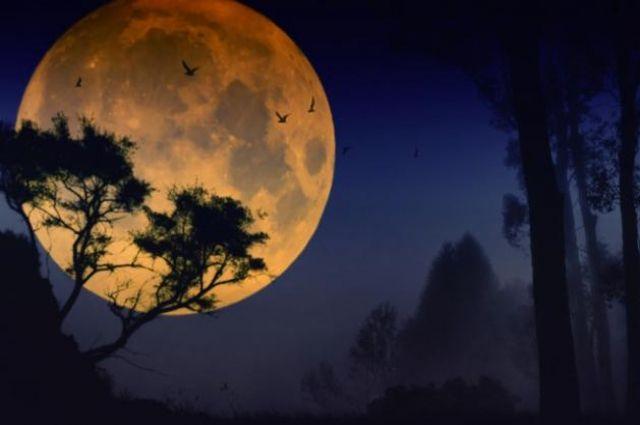 Луна РБК-Украина