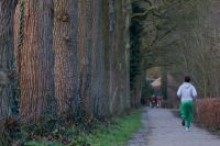 Грунтовая дорога в парке хорошо подойдет для тренировок