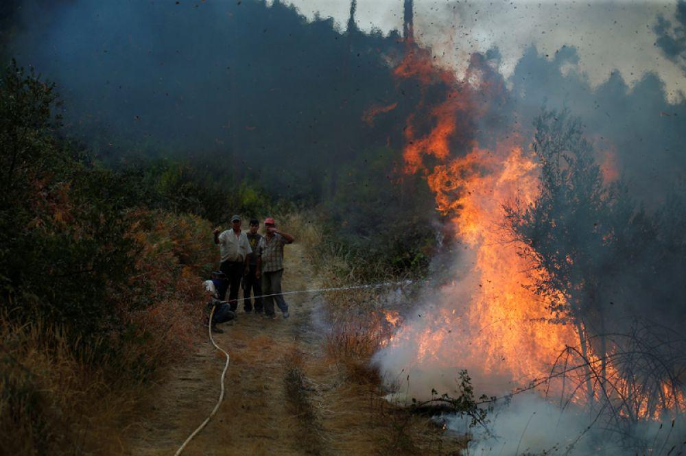 Жители деревни Брежу-Гранде борются с огнём, Португалия.