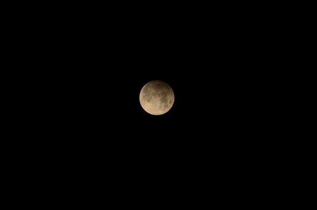 В августе россияне смогут наблюдать частное затмение Луны и звездный дождь