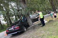 Свадебный автомобиль с молодожёнами врезался в дерево.