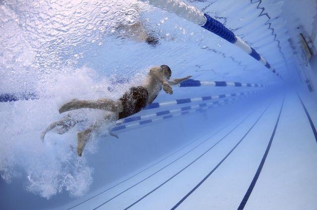 Пловцу Алексею Брянскому присвоено спортивное звание.