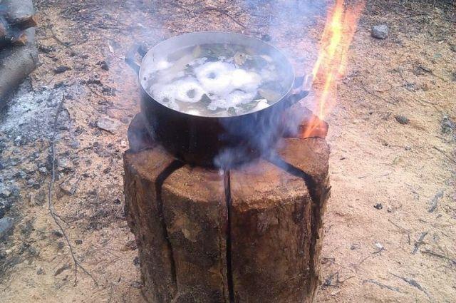 На такой эко-плите можно приготовить любое блюдо.