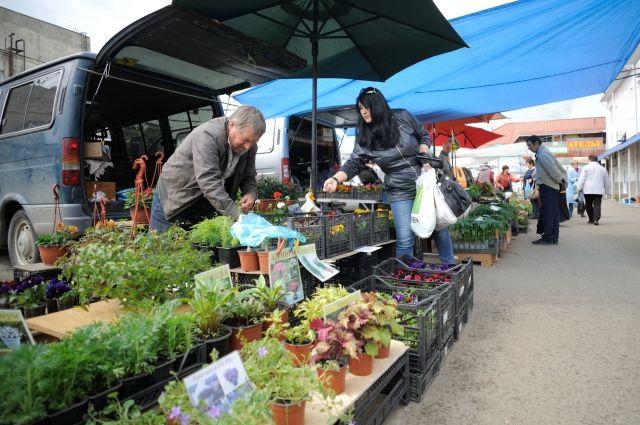 Возле ДК «Строитель» тюменцы продавали овощи без документов