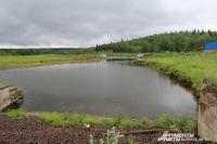 На этом озере неизвестная рыба травмирует людей уже не в первый раз.