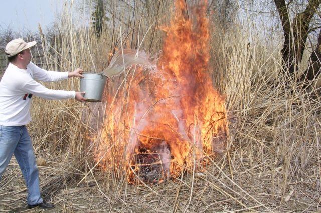 В Пуровском районе действуют десять природных пожаров
