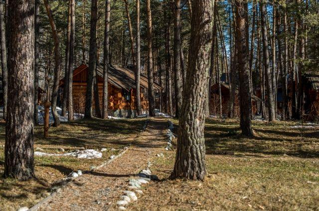 Эко-отель в Республике Алтай.