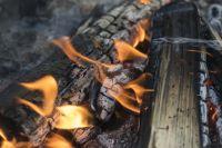 С начала пожароопасного сезона (с весны) в Новосибирской области 132 очага природных пожаров