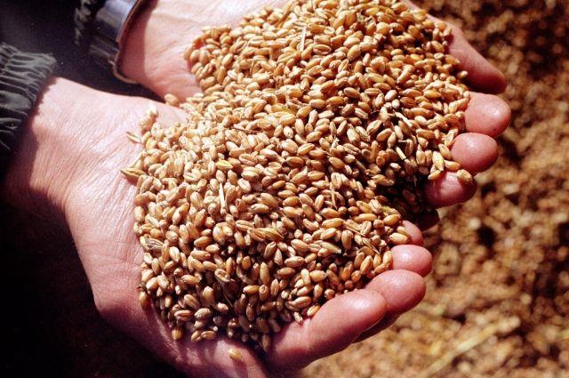 Минагрополитики: Украина увеличила экспорт агропродукции вЕС практически  натреть